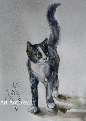 Черный кот. Акварель.