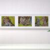 Набор картин с кошками. Серия авторской живописи.
