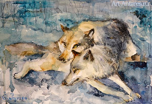 Волк и волчица акварелью.