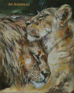Красивые львы вместе.