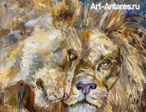 Картина львов. Любовь львов.